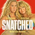 Snatched Movie 2017 Watch Online Free